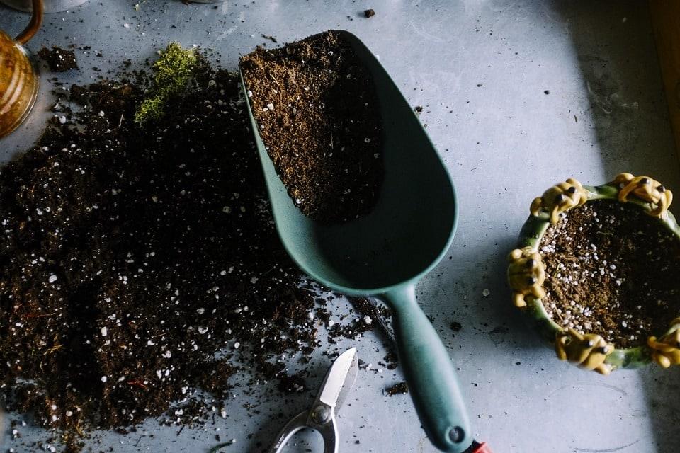 Comment se fait l'entretien du jardin selon les saisons ?